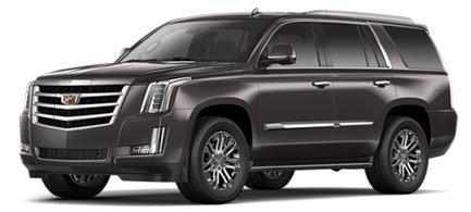2016 Cadillac Escalade For Sale in Greenville